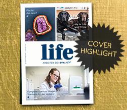 Cover-Highlight: ONLOAD 2/17 der Reinhausen-Gruppe